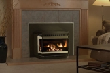 Firestar™ Gas Fireplace Insert - Discontinued