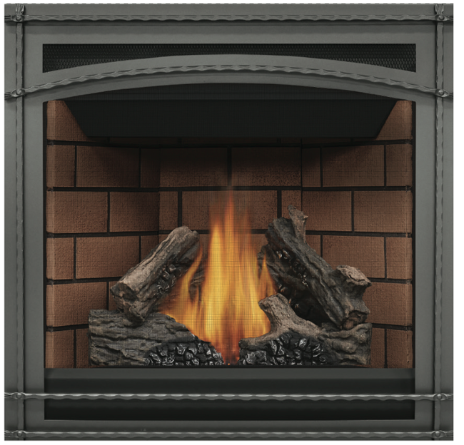 Napoleon Ascent GX36NTR Direct Vent Gas Fireplace by ...