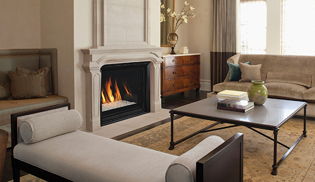 Envy cd astria gas fireplace by obadiahs woodstoves envy cd astria gas fireplace teraionfo