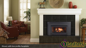 Regency Energy E21 Small Gas Insert