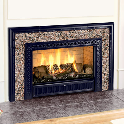 Hearthstone 8890 Gas Insert with Cast Iron Facade