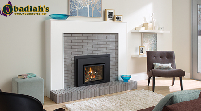 Regency Liberty L234 Small Direct Vent Gas Insert