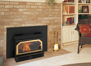 Ironstrike Canyon C310 Fireplace Insert By Obadiah 39 S Woodstoves