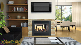 Regency Panorama P121 Two Sided Direct Vent Gas Fireplace - Discontinued