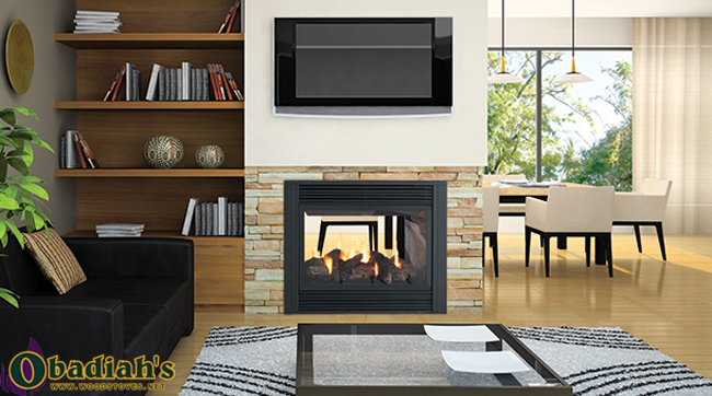 Regency Panorama P121 Two Sided Direct Vent Gas Fireplace