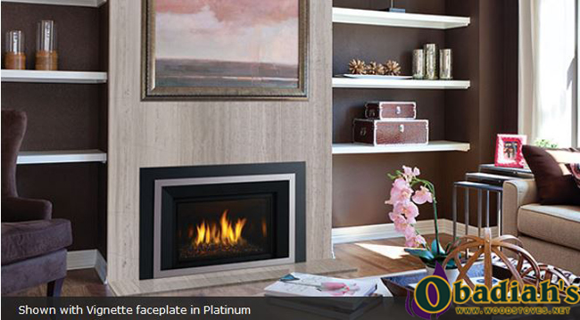 Regency Horizon HRI4E Medium Direct Vent Gas Insert