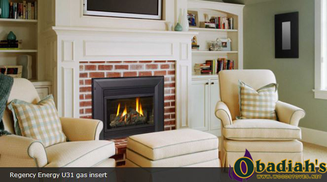 Regency Energy U31 Medium B-Vent Gas Insert