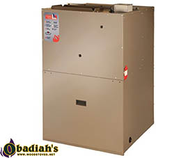 Napoleon Condo Pack Gas Heating & Electric Heating Forced Air