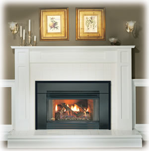 GI3600 Napoleon Natural Vent Gas Insert by Obadiah s
