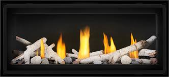 Napoleon Luxuria Series 62 Direct Vent Gas Fireplace