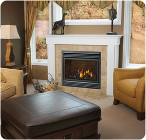 BGD36NTR Napoleon Fireplace - Discontinued*
