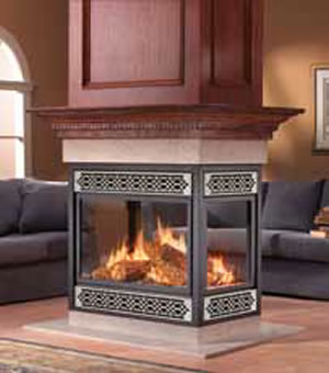 Bgd40n Napoleon Multi View Gas Fireplace At Obadiah S