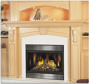 BGD42 Napoleon Direct Vent Gas Fireplace