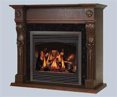 GD33NR Napoleon Gas Fireplace