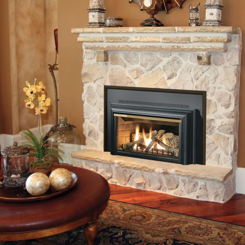 The GDIZC Napoleon Gas Insert offer multi-level burner technology producing amazingly realistic flames though its 400 sq. inch viewing area