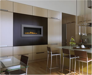 LHD45 Linear Napoleon Direct Vent Gas Fireplace