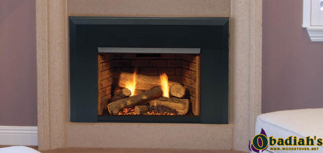 Majestic Topaz Direct Vent Gas Insert